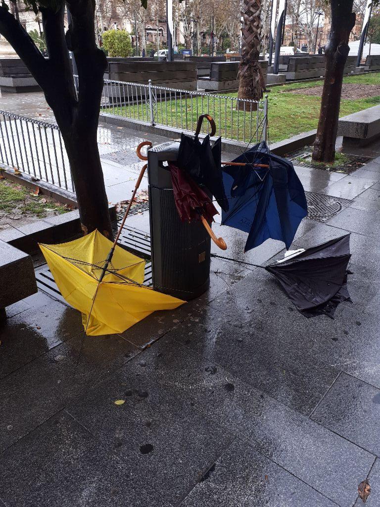 Friedhof Der Regenschirme Nach Dem Sturm